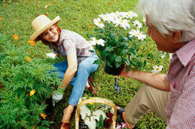 """A Green Thumb Can Add """"Spring"""" to the Steps of Seniors"""