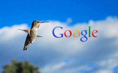 Google Hummingbird: Finding the Nectar in the New SEO Algorithm