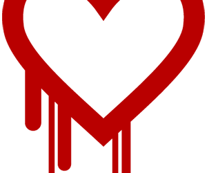 The Heartbleed Bug: What Senior Living Leaders Should Know and Do