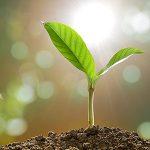 5 Hot Senior Living Growth Strategies for 2018